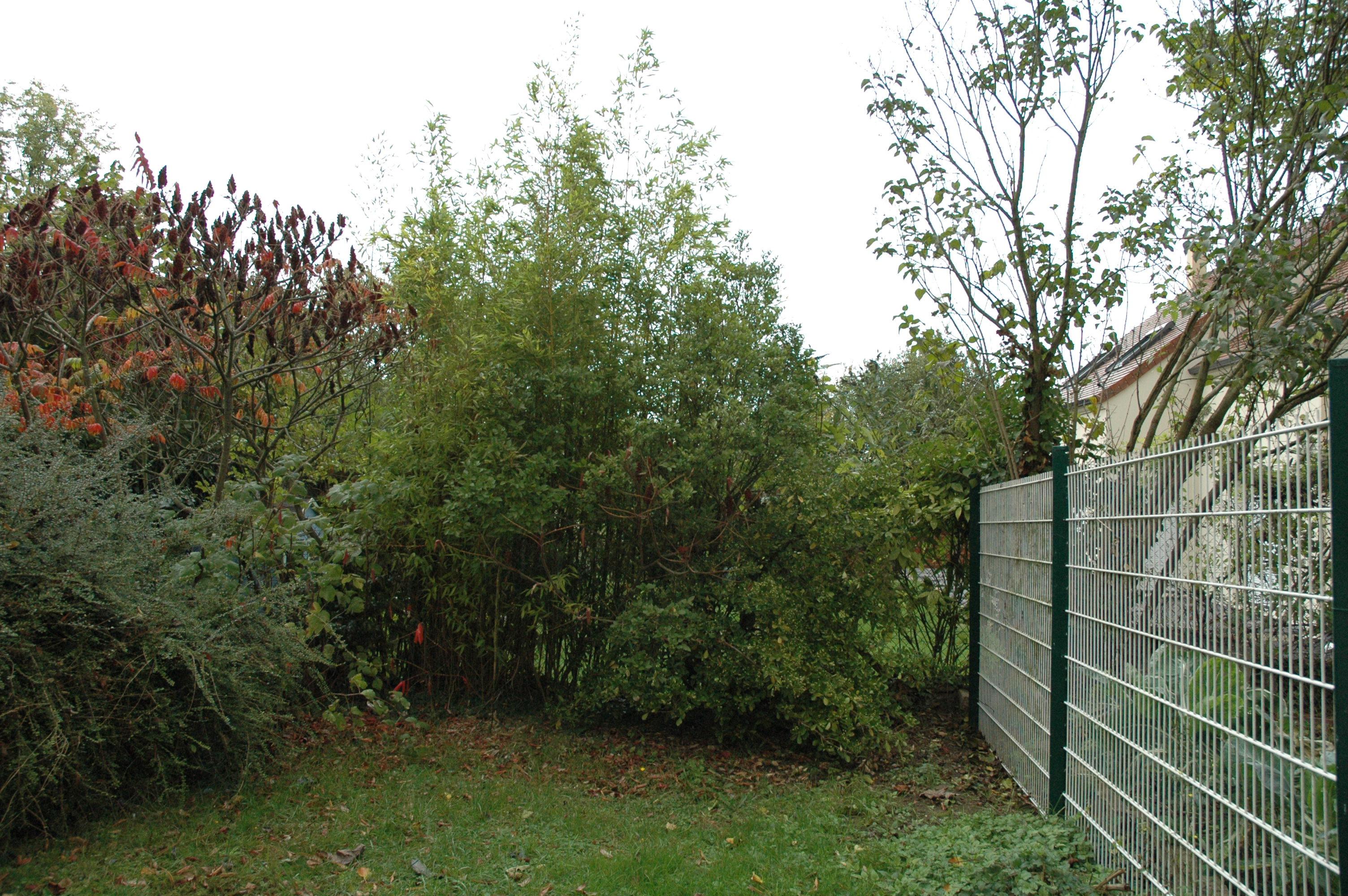 Entretenir son jardin mon jardin banlieusard for Entretenir jardin